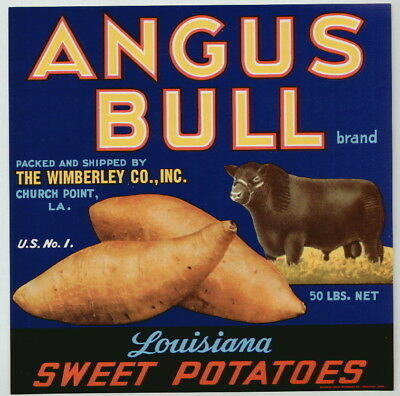 ANGUS BULL Vintage Church Point Louisiana Yam Crate Label, **AN ORIGINAL LABEL**