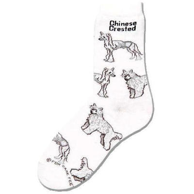 2017 Chinese Crested Socks