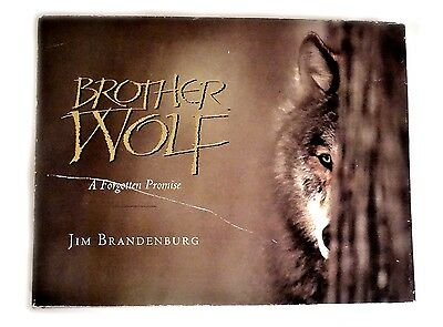 BRANDENBURG BOOK Signed 1st Ed BROTHER WOLF FORGOTTEN PROMISE SALE 30% off