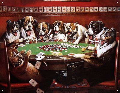 "8 Drunk Dogs Drinking Beer Playing Poker Classic Tin Sign 16"" x 13"""