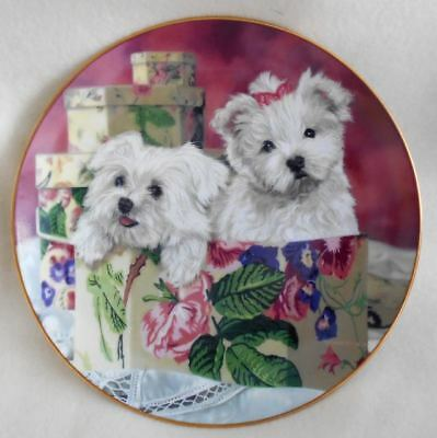 Vintage Lim. Edition Maltese Dogs Collector Plate Original Boxed Set Certificate