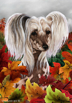Large Indoor/Outdoor Fall Flag - Chinese Crested 13069