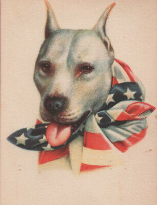 Artist Wallace Robinson ~ Staffordshire Pit Bull Terrier ~ Patriotic Dog Usa