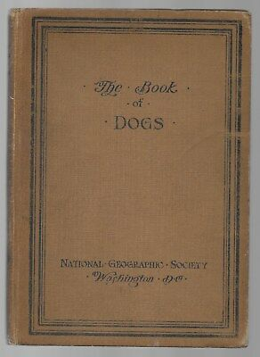 The Book Of Dogs National Geographic Society Antique Illustrated 1919