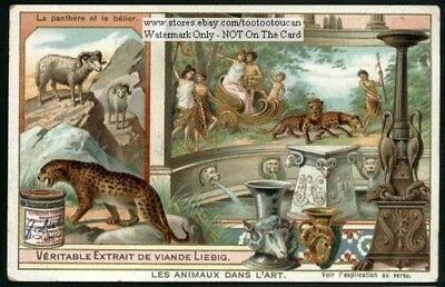 Ram and Panther  Art Artist Animals History c1903 Trade Ad Card