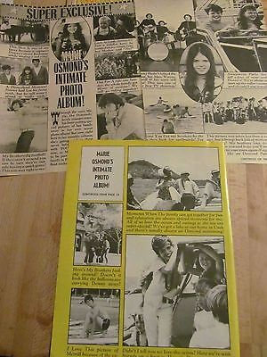 The Osmonds, Donny, Osmond Brothers, Three Page Vintage Clipping