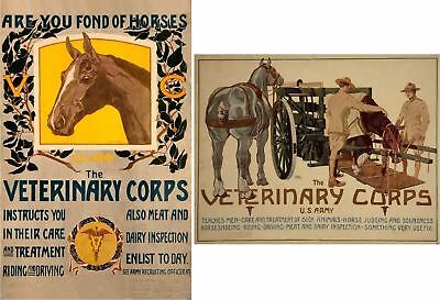 2 US Army Veterinary Corp Recruitment Posters by Horst Schreck Art Prints  P265