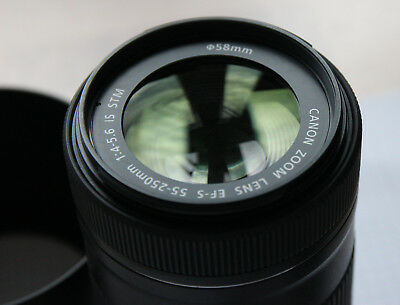 Canon EF-S 55-250mm 1:4-5.6 IS STM, 1 ½ Jahre alt, sgt Zustand
