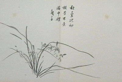 ORCHID & ZEN HAIKU POEM : An Original 1886 Japanese Woodblock Print By TETSUO