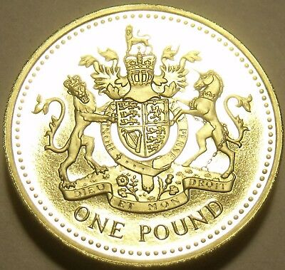 Gem Cameo Proof Great Britain 1993 Pound~An Ornament and a Safeguard~Free Ship