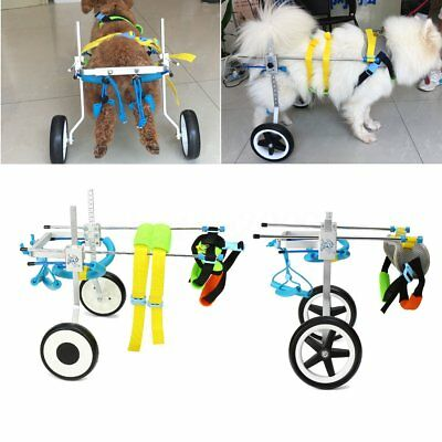 2 Type Pet Wheelchair For Handicapped Cat Dog Disabled Hind Legs Stainless Steel
