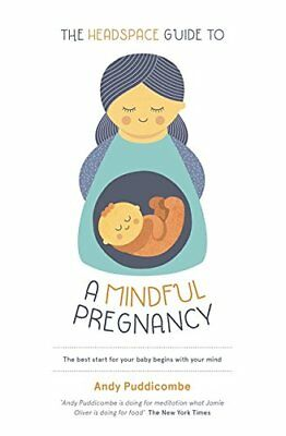 The Headspace Guide to...a Mindful Pregnancy New Paperback Book