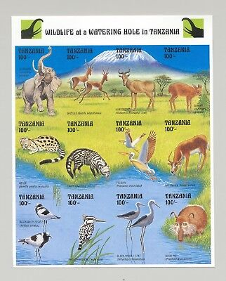 Tanzania #1000 Wildlife at Watering Hole 1v M/S of 12 Imperf Proof
