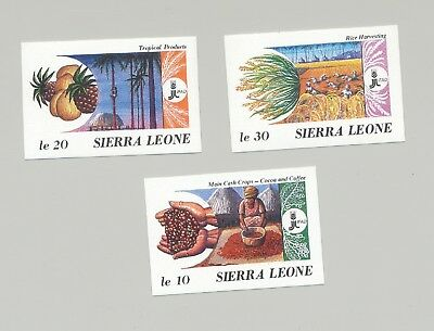 Sierra Leone #967-969 IFAD, Food, Cocoa, Fruit 3v Imperf Proofs