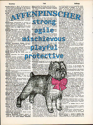 Affenpinscher Dog Traits Altered Art Print Upcycled Vintage Dictionary Page