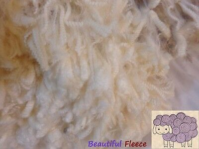 Beautiful Fresh Shorn White Merino Fleece Spinning#32