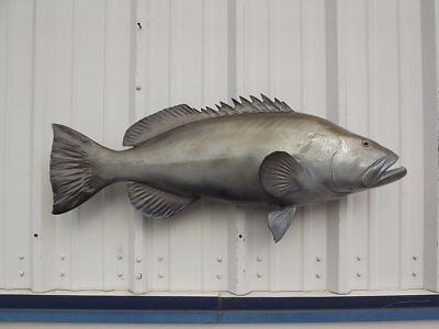 38 Black Grouper Two Sided Fish Mount Replica Taxidermy 30780