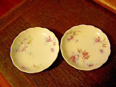 2 Haviland Limoges butter pats antique