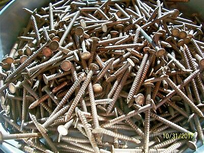 "60 - Antique, Solid Brass 1 7/8"" Long,  Ring Nails,  Marine-Boat-Woodworking +"