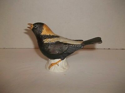 Vintage Goebel Germany Porcelain Bisque Black Orange Oriole Bird Figurine  38505