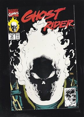Ghost Rider #15 Glow in the Dark cover by Mark Texeira! 1st Printing!