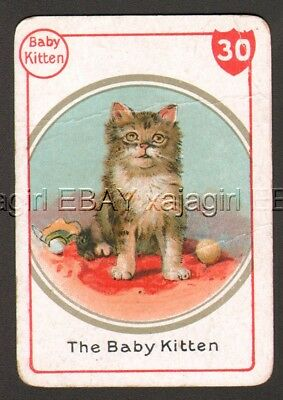 CAT Tabby Gray Kitten, Victorian Playing Card- Swap