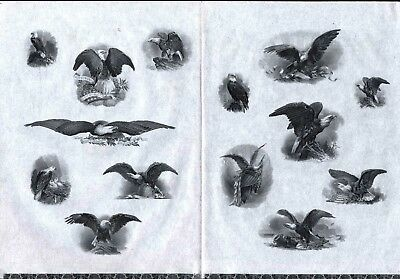 Double Sheet Of Eagles (American Bank Note Company ?)