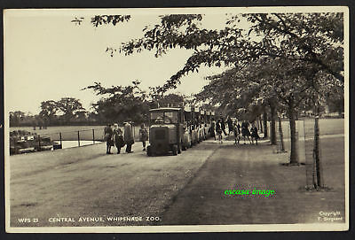 WHIPSNADE ZOO postcard Central Avenue with visitors tractor train
