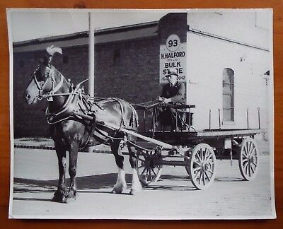 Vintage 1930's Horse & Fruit Cart Photograph South Melbourne