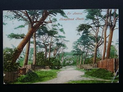 London HAMPSTEAD HEATH Fir Avenue c1905 Postcard KENTISH TOWN Duplex Postmark