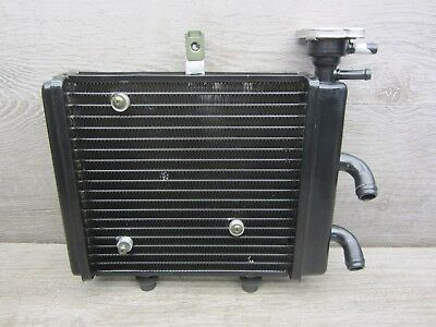 cooler radiator Aprilia Scarabeo 125 200 IE from bj.11