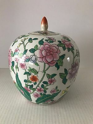 Ex-Large Melon Shaped Ginger Jar / Hand Painted