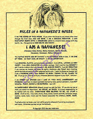 Rules In A Havanese's House