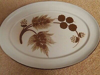 denby cotswold Oval steak plate Multiples available