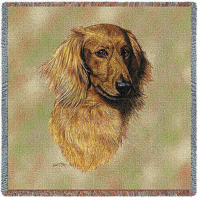 Lap Square Blanket - Longhaired Red Dachshund by Robert May 3324