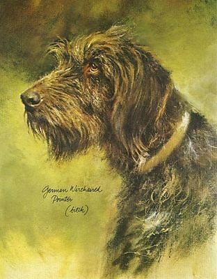 German Wirehaired Pointer #2 Dog Print - Poortvliet
