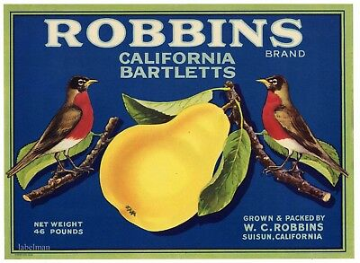 ROBBINS Vintage Suisun Pear Crate Label, Red Robin Bird **AN ORIGINAL LABEL**652