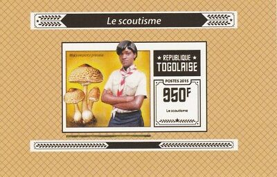 Togo  6966  - 2015 SCOUTING #2  imperf deluxe shee unmounted