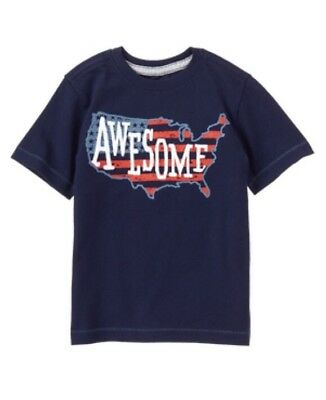 Boys Gymboree Star Spangled Days American Flag States Awesome Shirt NWT 2t
