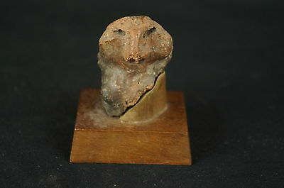 "Excellent Pre-Colombian unusual ceramic artifact w. stand 2"" [Y8-W6-A9]"