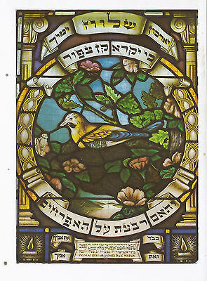 Israel,jerusalem,judaism,hechal Shlomo,the Synagogue An Old Mint Pc, About 1963