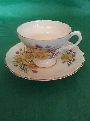 Made In England Bone China Cup & Saucer