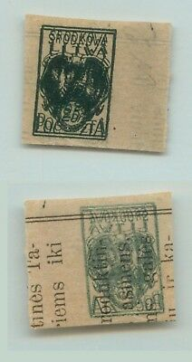 Central Lithuania 1920 SC 2 mint proof double print . d9276