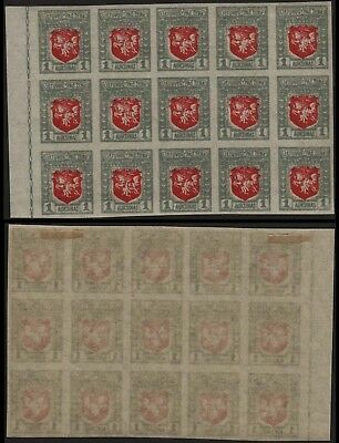 Lithuania 1919 SC 58 mint imperf block of 15 . c8133