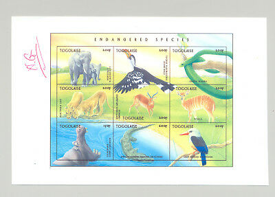 Togo #1726 Endangered Species 1v M/S of 9 Imperf Chromalin Proof Unissued Colors