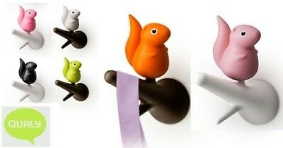 Qualy Hook Squirrel Set of 2 Coathook Wall Hooks in Various Colours