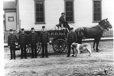 Antique Firemen Horse Drawn Wagon Fire Department Dog With Lantern In Mouth