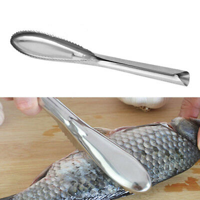 Stainless Steel Fish Scale Remover Cleaning Scaler Scraper Kitchen Peeler Tool