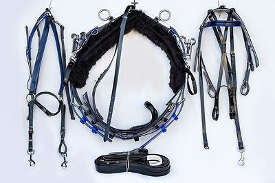 Quick Hitch Mini Trotting Harness - Black and Blue
