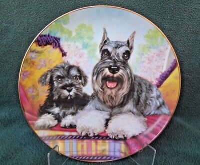 """MINIATURE SCHNAUZER PLATE """"Father's Pride"""" The Canbury Mint Limited Edition"""